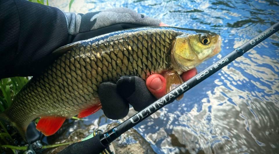 Спиннинг Zemex для ловли голавля на колебалки Sv Fishing Lures