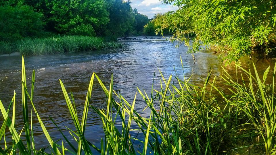 Река Тетерев голавль на блесны SV fishing Lures