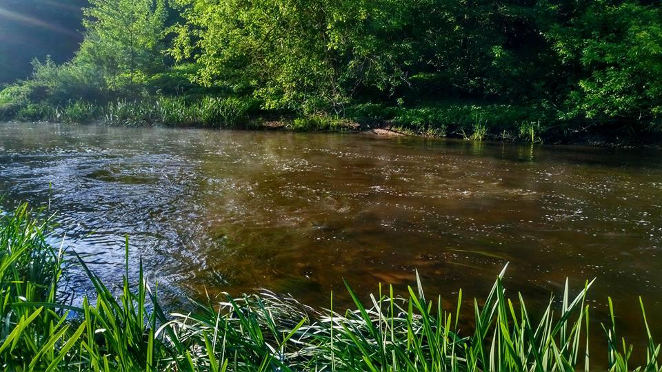 Голавль на колебалки SV Fishing Lures на реке Тетерев