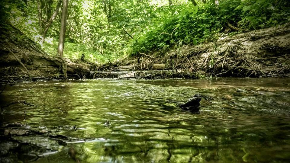 Рыбалка на малой реке с SV Fishing Lures